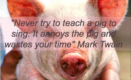 Accountability: Are you teaching a pig to sing?
